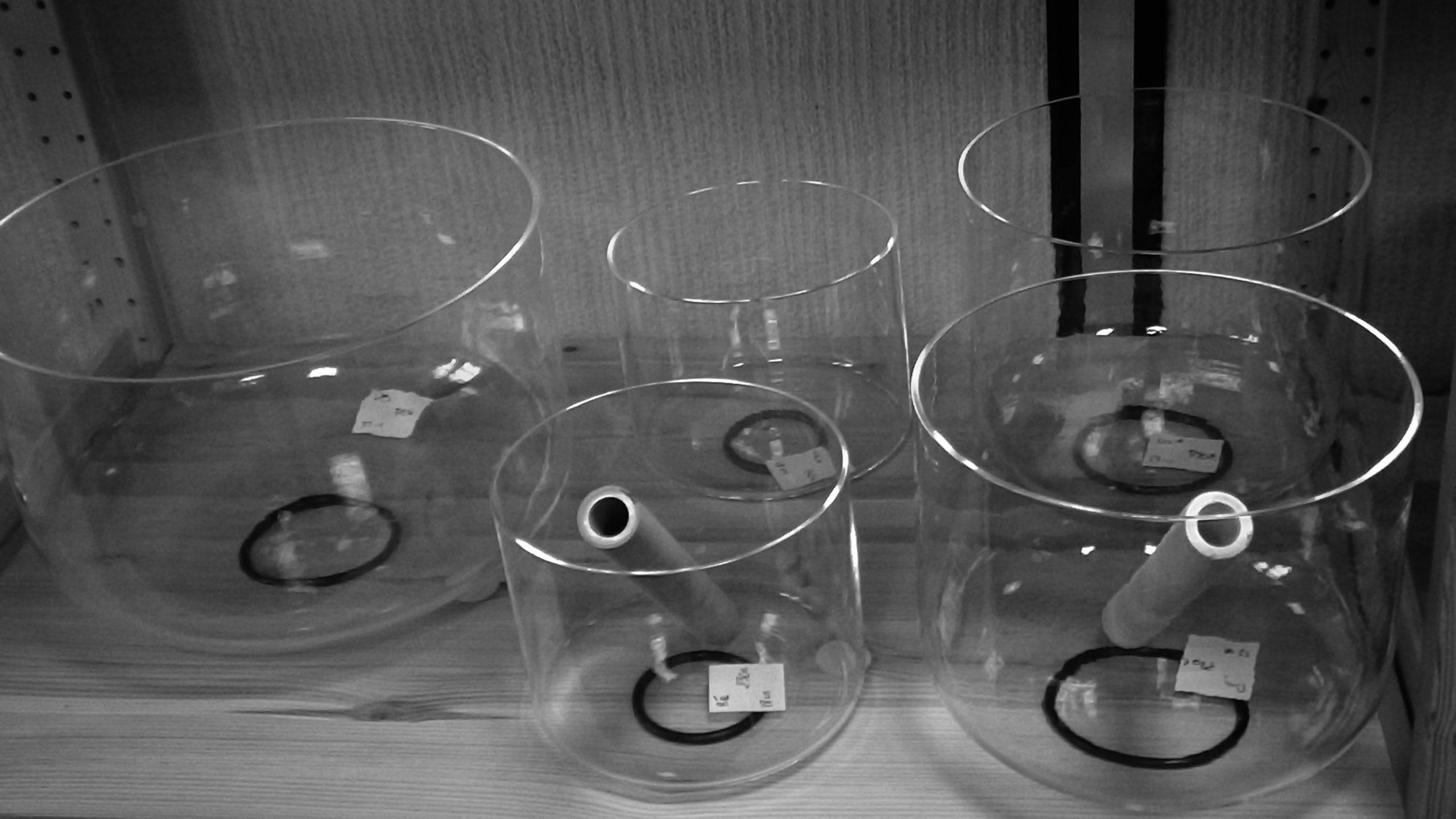 Bols de cristal clair mandalia