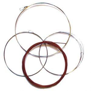 Set de cordes tampura et anantar et svaraveena.