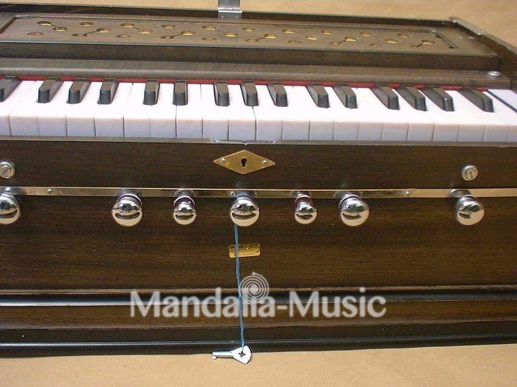 Harmonium Paloma Standard