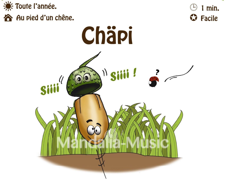CHAPI : Le gland siffleur (Flutin des bois)