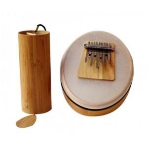 Duo instruments