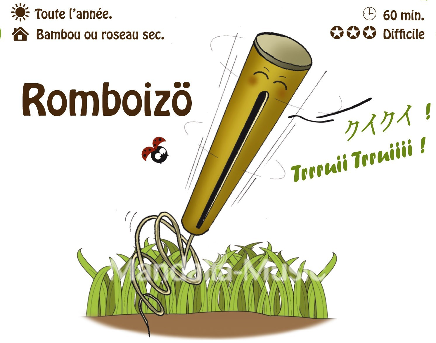 ROMBOIZO : La rhombe oiseau (Flutin des bois)