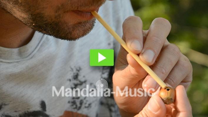 Vidéo des instruments de musique de la nature