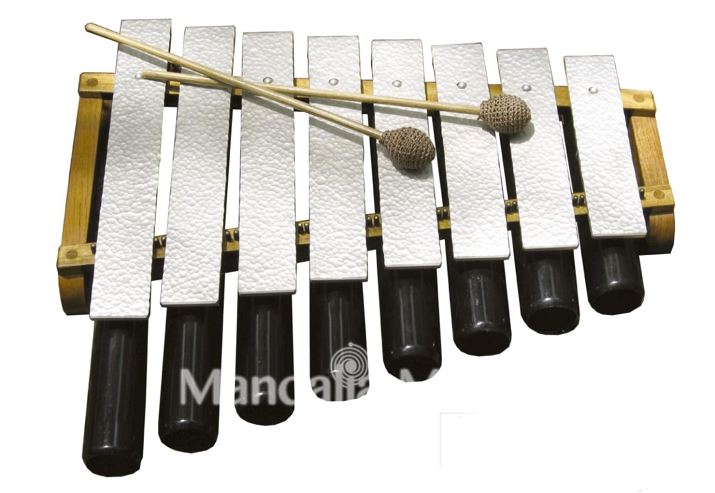 Métallophone avec résonateur 8 lames (Shivaranjini)
