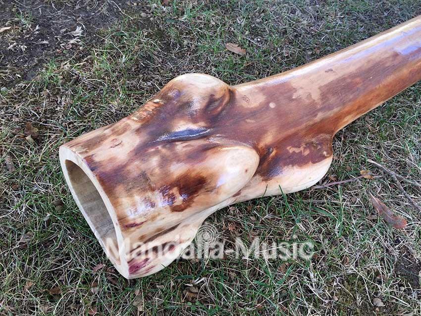 Didgeridoo en bois flotté